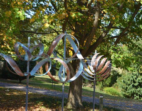 The Dawes Arboretum